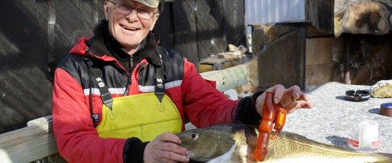 Norwegian fisherman makes unusal finding in his catch