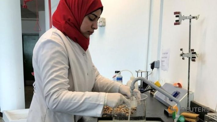 researcher-amal-el-husseiny-works-on-her-project-to-create Bioplastica dal carapace dei gamberetti