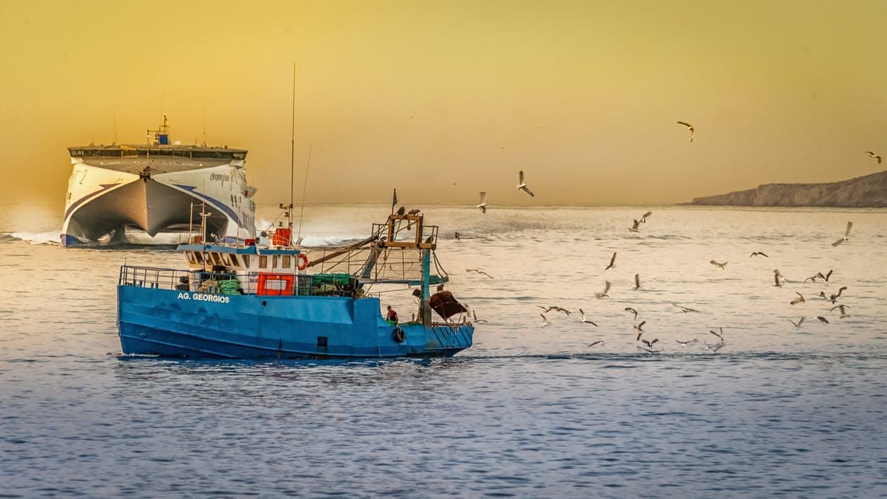 Pesca, Bene modifica sistema sanzionatorio, rimane urgente questione ammortizzatori post thumbnail